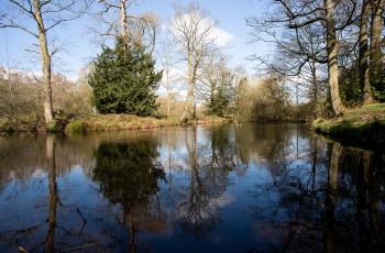 Alderley Park River Shot