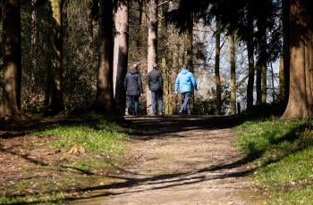 Alderley Park Scenery
