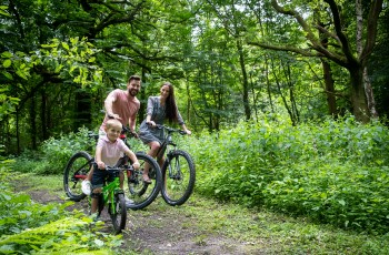 Bikes at Heatherley Wood